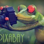 Pixabay、インパクト抜群のアイキャチ画像をお探しならおすすめのサイト